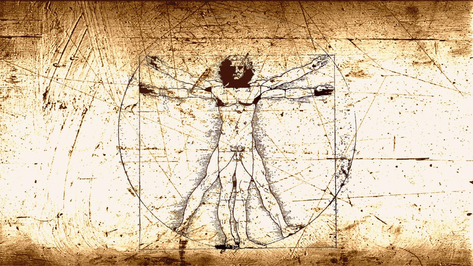 Porträt einer naturwissenschaftlichen Zeichnerin - WDR 5 Leonardo ...