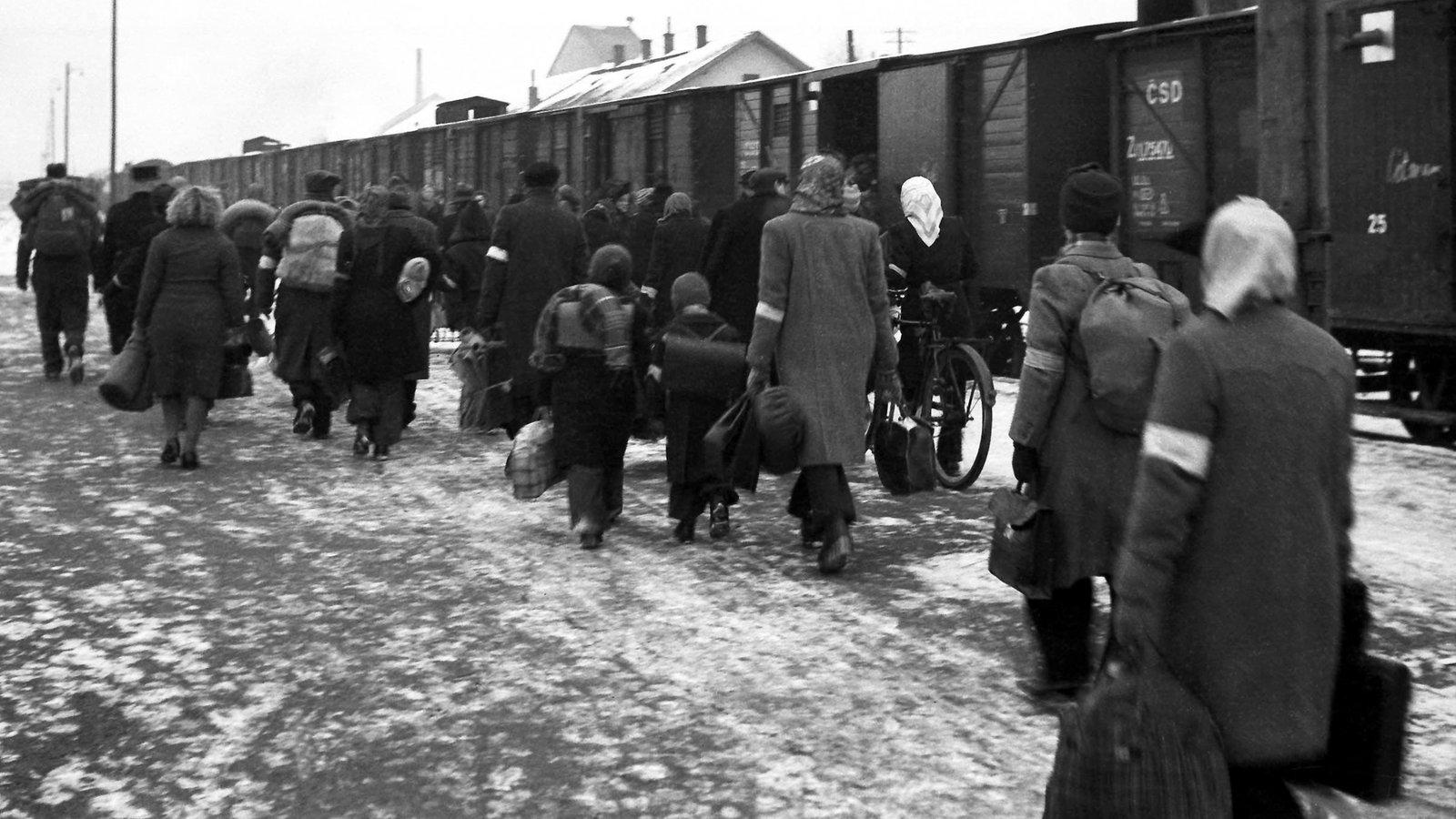 Geschichte Der Flüchtlinge