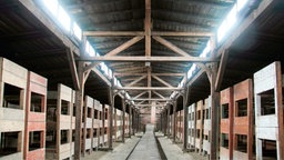 Konzentrationslager auschwitz doku