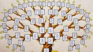 Zeichnung des Stammbaums einer Familie