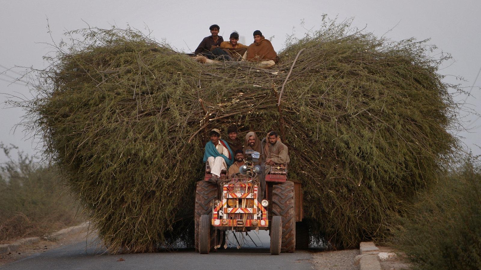 geschichte der landwirtschaft traktoren landwirtschaft gesellschaft planet wissen. Black Bedroom Furniture Sets. Home Design Ideas
