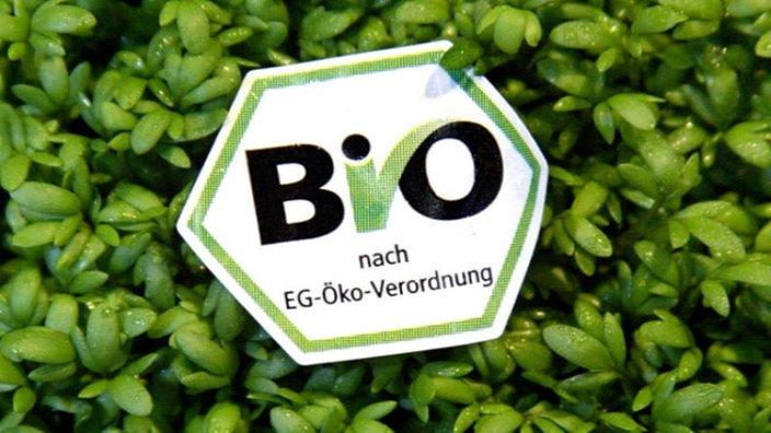 Lebensmittel  Lebensmittel: Bio-Lebensmittel - Lebensmittel - Gesellschaft ...