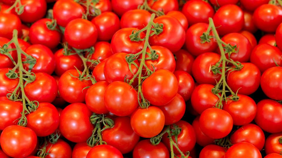 lebensmittel tomaten lebensmittel gesellschaft. Black Bedroom Furniture Sets. Home Design Ideas