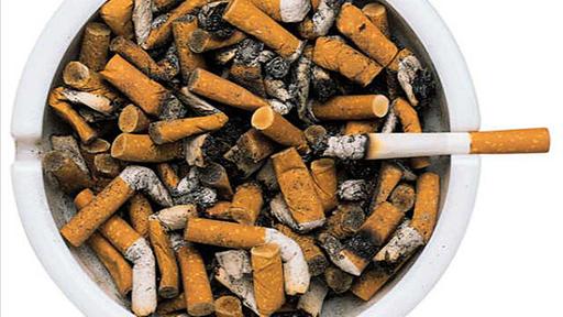 nikotin t dliche dosis rauschmittel gesellschaft planet wissen. Black Bedroom Furniture Sets. Home Design Ideas