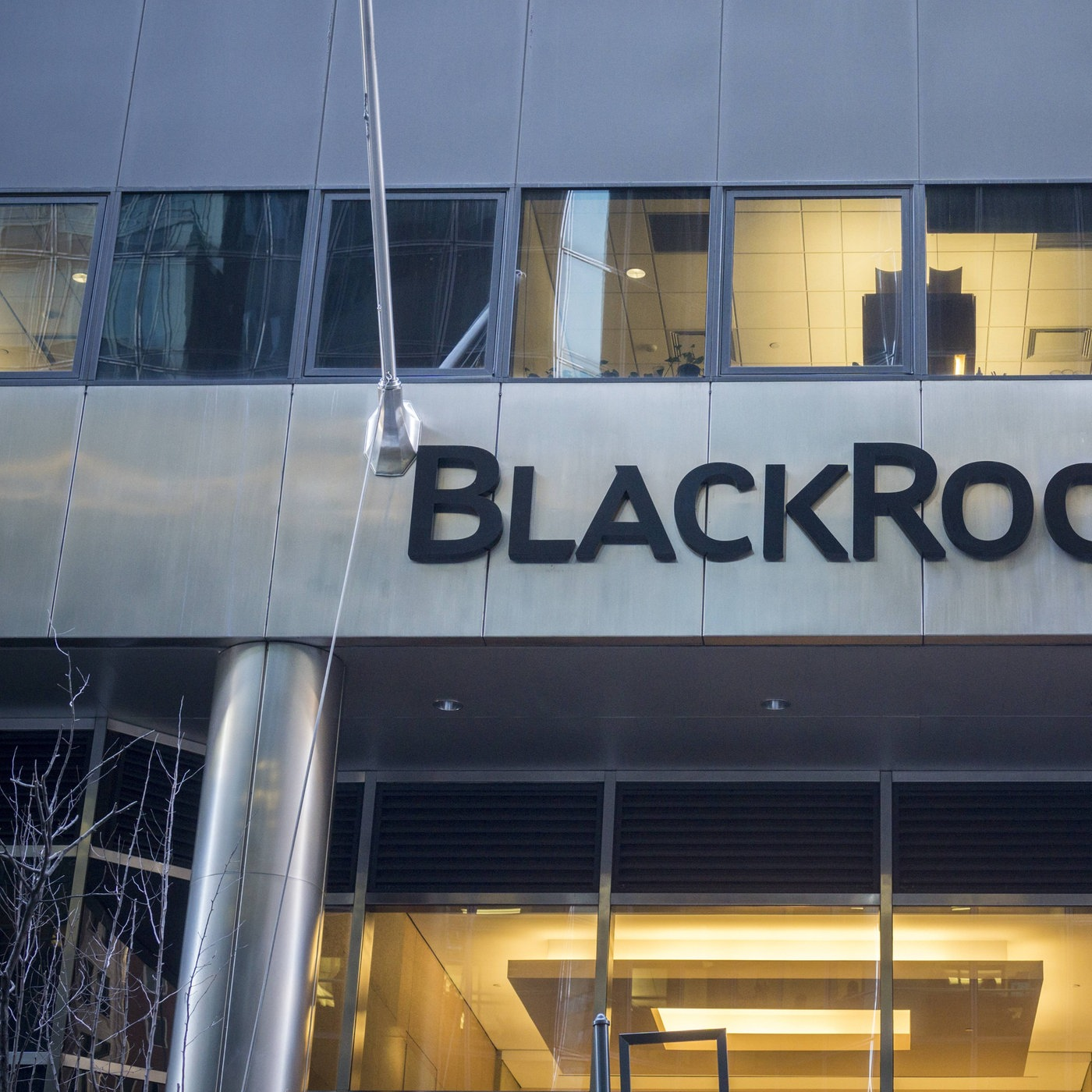 blackrock mediathek