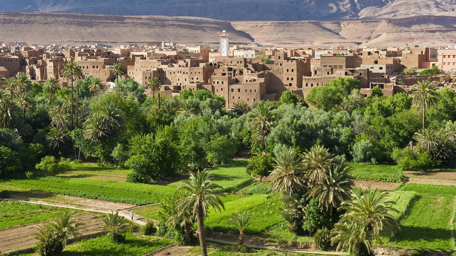 afrika marokko afrika kultur planet wissen. Black Bedroom Furniture Sets. Home Design Ideas
