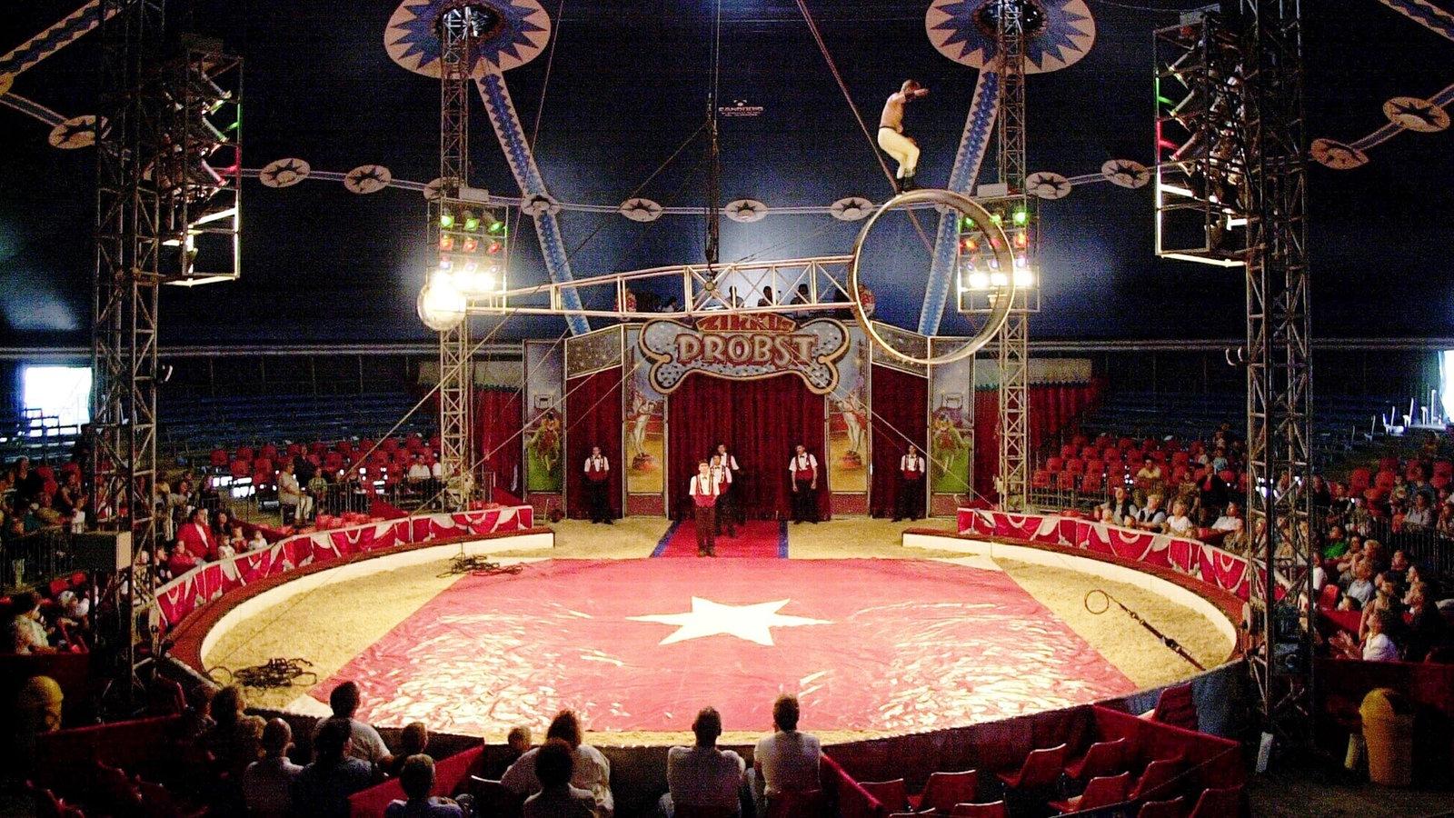 Zirkus Nrw