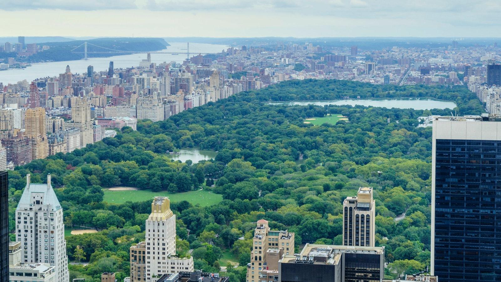 New York Central Park Metropolen Kultur Planet Wissen