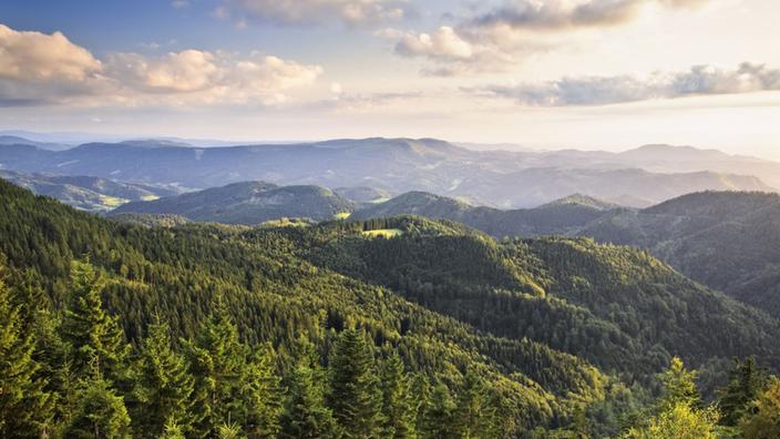 Planet Schwarzwald mittelgebirge schwarzwald schwarzwald mittelgebirge kultur