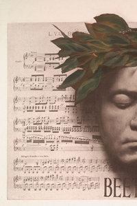 eine maske beethovens zeigt sein gesicht mit geschlossenen augen - Beethoven Lebenslauf