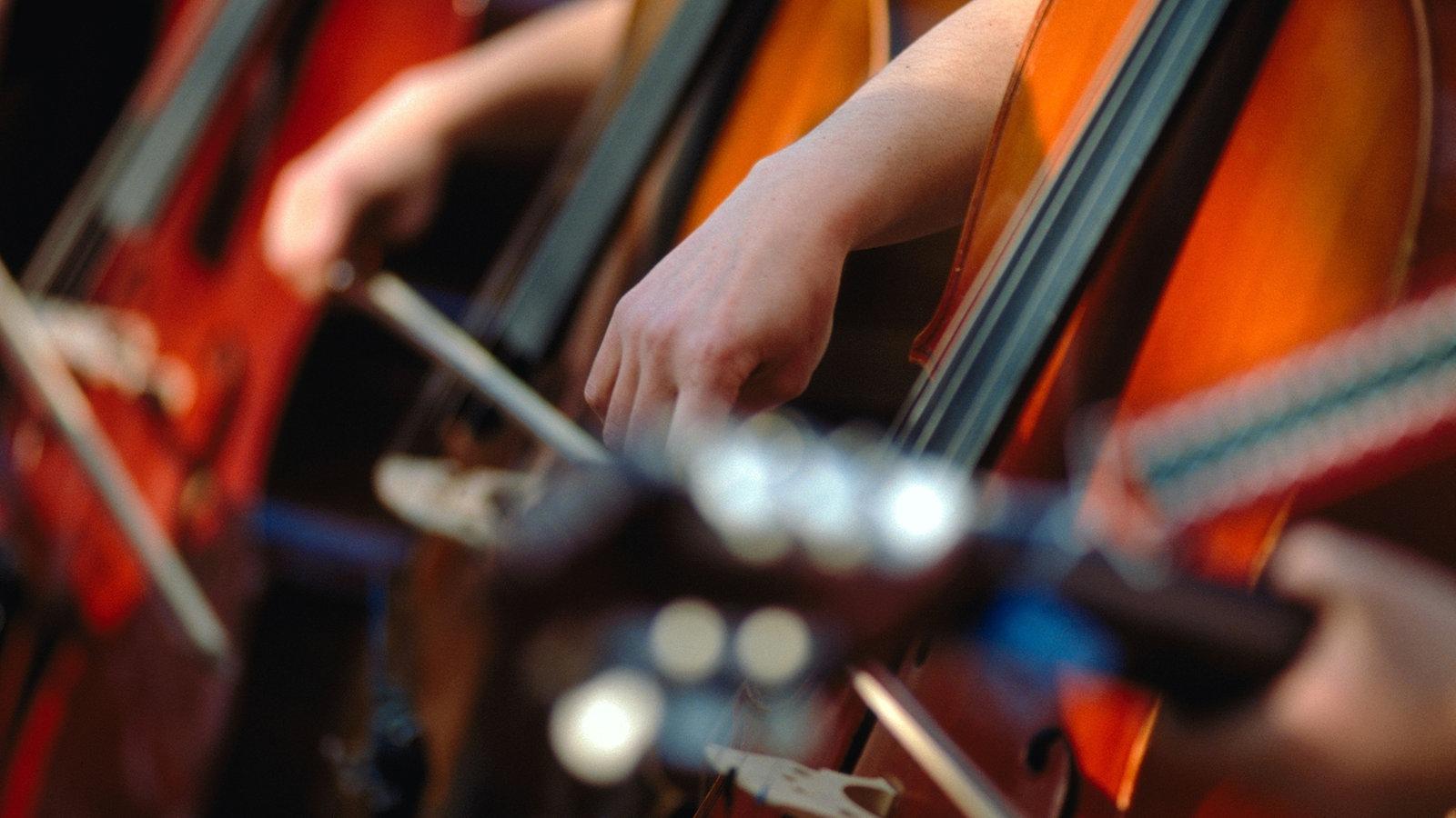Musik: Macht der Musik - Musik - Kultur - Planet Wissen