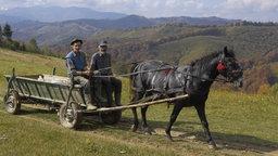 Zwei rumänische Bauern mit ihrem Pferdewagen auf einer Weide in Siebenbürgen.
