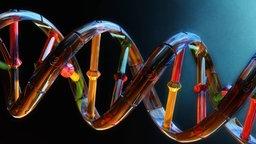 Illustration der DNS-Doppelhelix, wobei die vier Buchstaben mit je einer Farbe dargestellt sind.