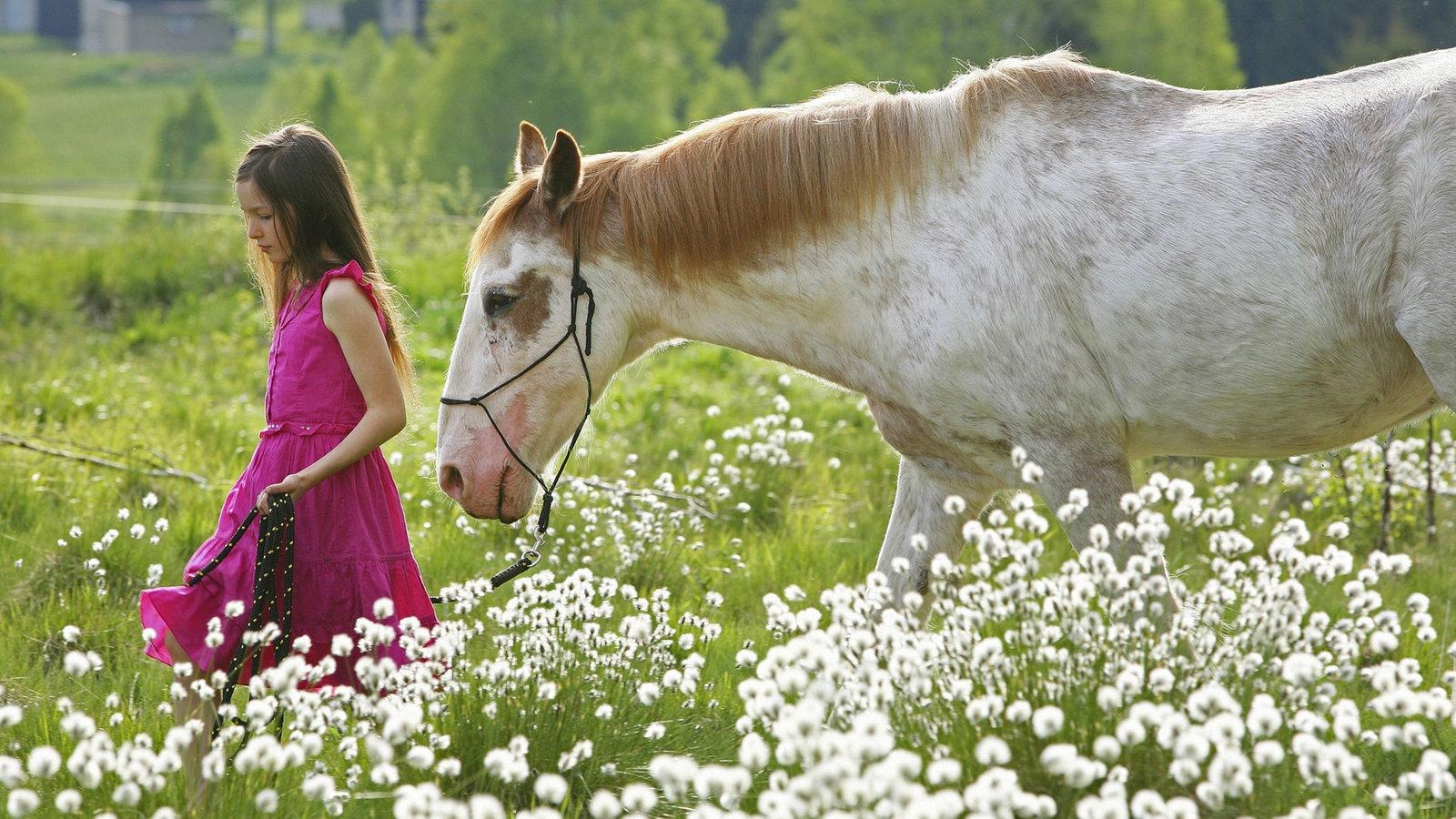 pferde wie das pferd ein m dchentier wurde pferde haustiere natur planet wissen. Black Bedroom Furniture Sets. Home Design Ideas