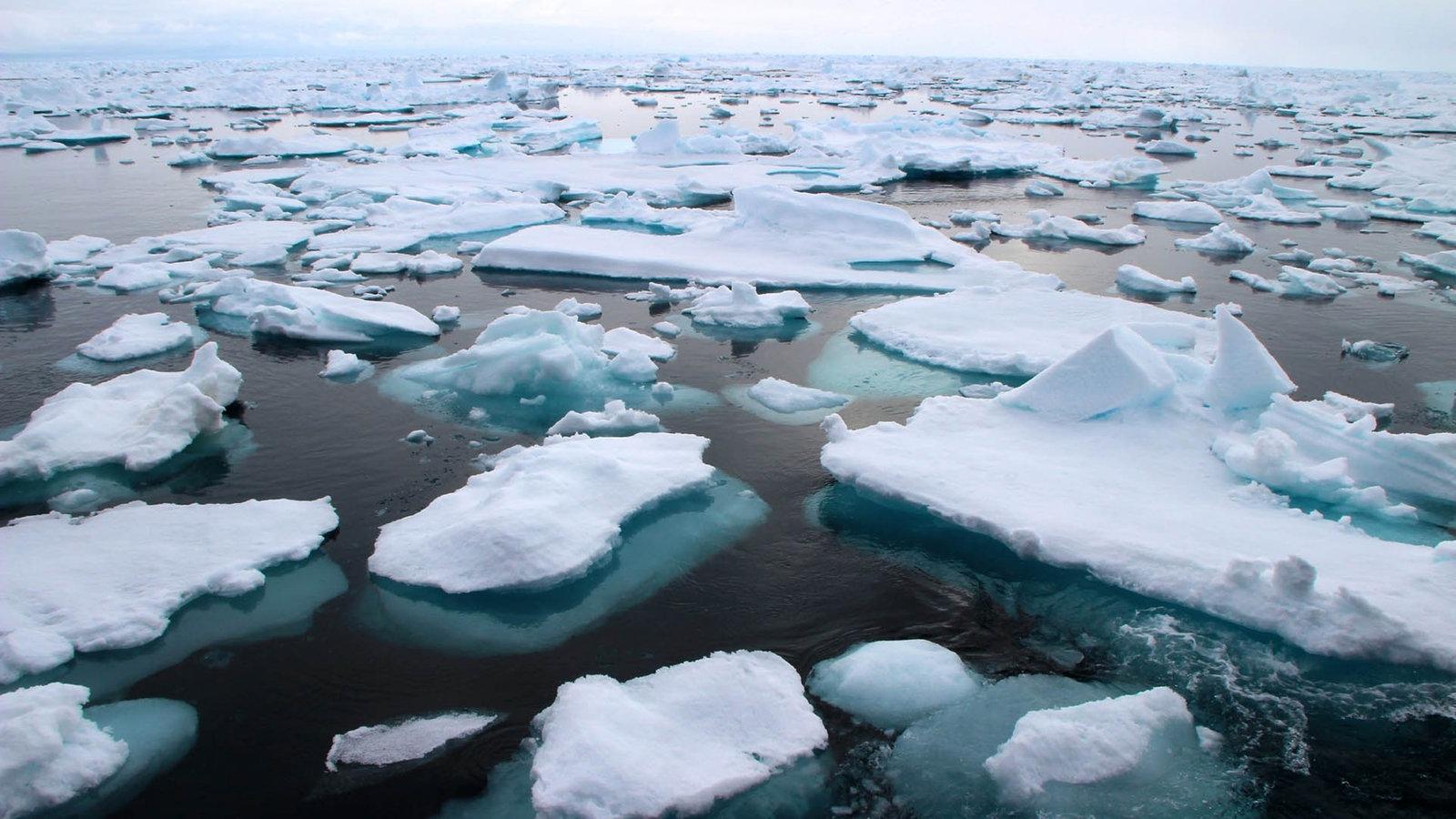 Eisschmelze Antarktis