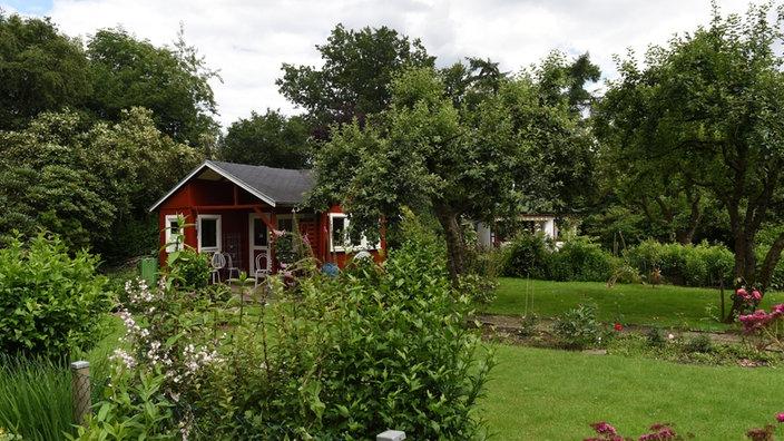 kleine zimmerrenovierung hutte idee schrebergarten, gartenkultur: der kleingarten - pflanzen - natur - planet wissen, Innenarchitektur