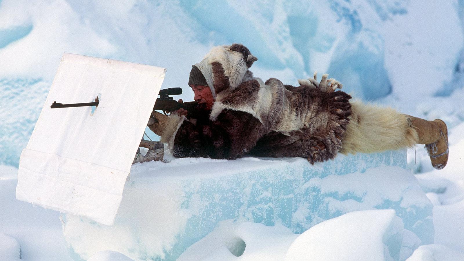arktis berlebensstrategien polarregionen natur planet wissen. Black Bedroom Furniture Sets. Home Design Ideas