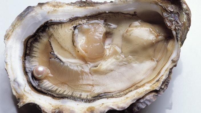 Perlen  Schmuck: Perlen - Schmuck - Natur - Planet Wissen