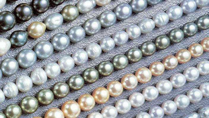 Perlen  Perlen: Perlen-Vielfalt - Schmuck - Natur - Planet Wissen