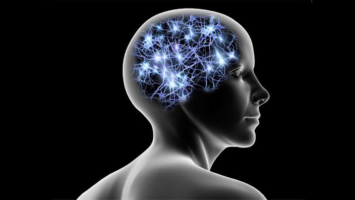 Sinnestäuschung: Wie das Gehirn die Welt sieht - Sinne - Natur ...