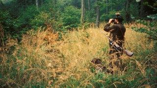 Jäger mit Hund im Wald.