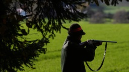 Neben einer Tanne ist der Schattenriss eines Jägers mit Gewehr im Anschlag zu sehen, im Hintergrund eine Wiese.