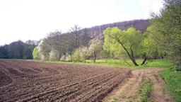 Umwelt lebendiger boden umwelt natur planet wissen for Boden 20 prozent