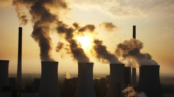Umweltverschmutzung aufsatz forschung synonym