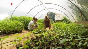 Zwei Frauen helfen auf dem Bauernhof