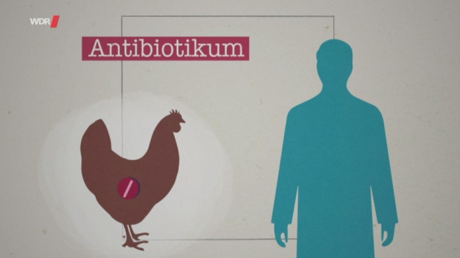 Wie gehen wir mit Antibiotika in der Tierhaltung um? - Mediathek - WDR