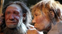 Porträt von zwei Neandertalern; Rechte: dpa