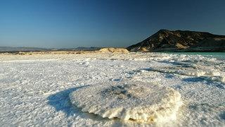 Ein pilzförmiges Salzgebilde im Abbe-See.