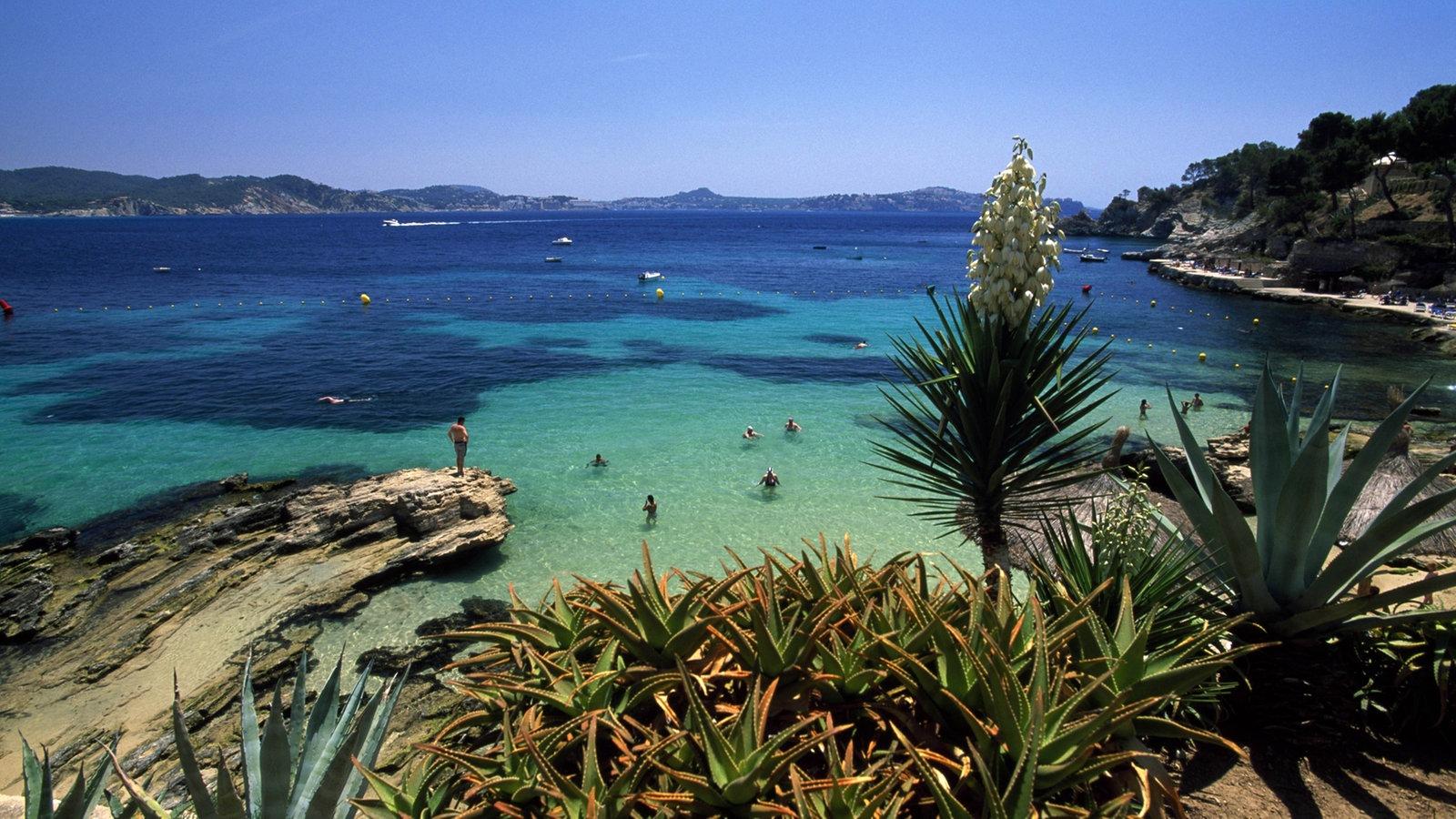 Www.Wetter.Com Mallorca