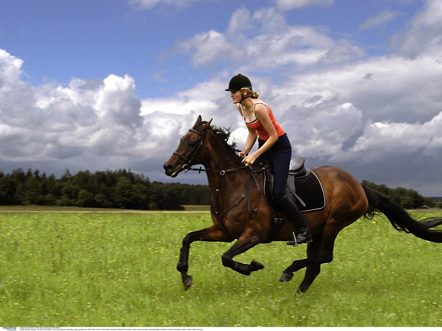 Reiten pferd nackt Reiten, Pferde,