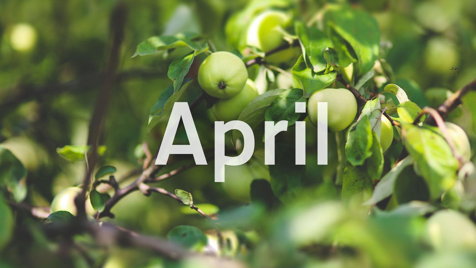 Bilder April