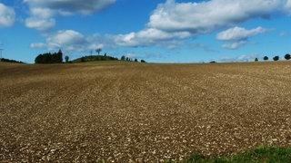 Der steinige Ackerboden auf der Schwäbischen Alb.