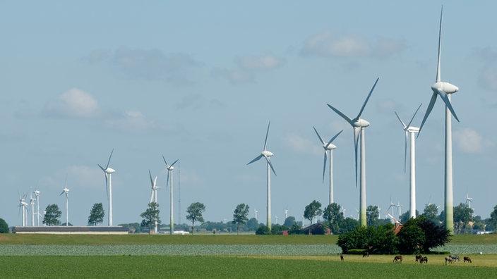 Большие ветряные мельницы на поле