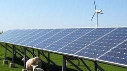Collage: Windräder vor Sonnenkollektoren
