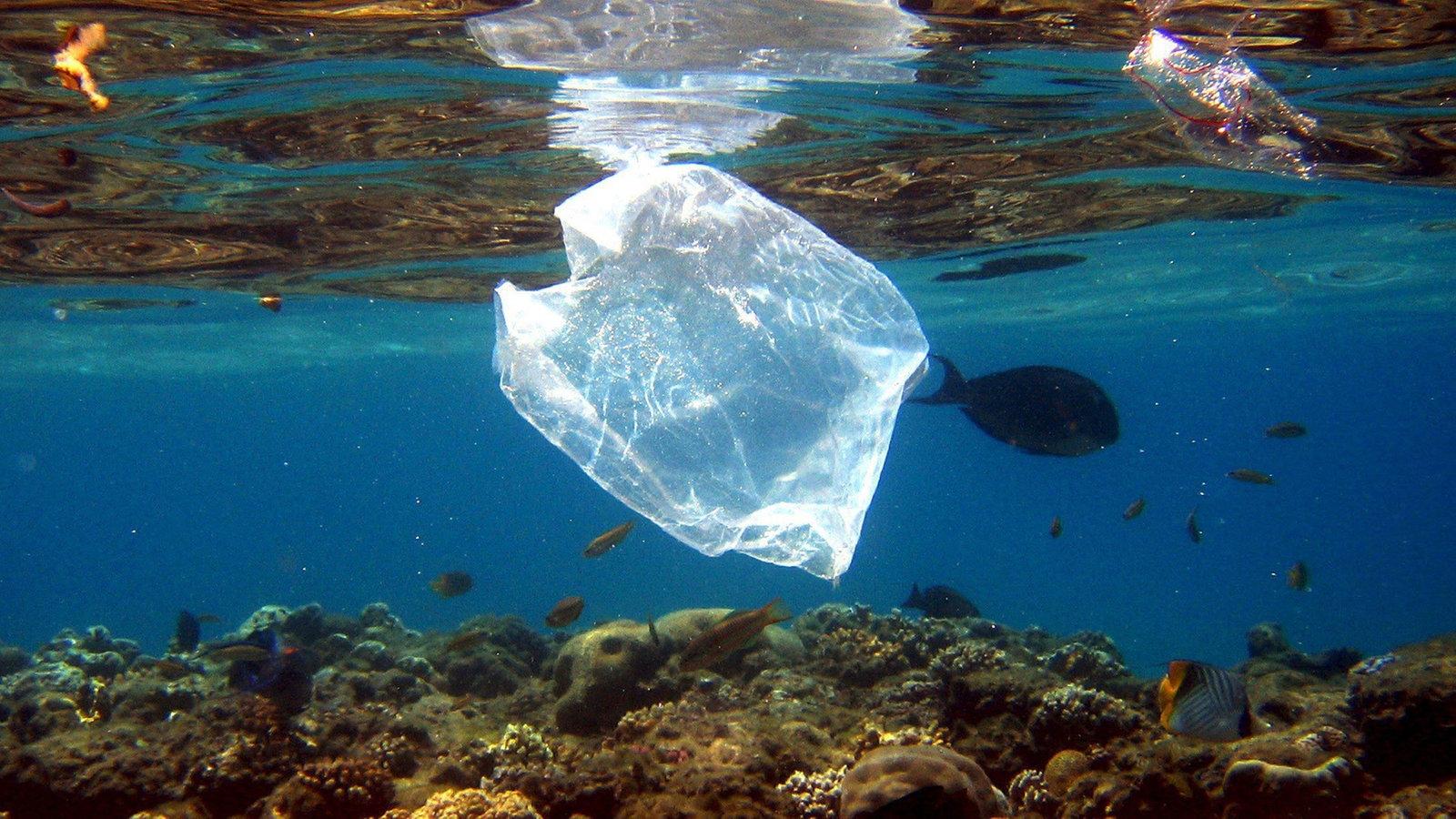 Plastik In Meeren
